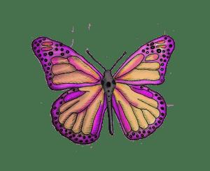 DEFENSORAS mariposa
